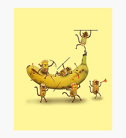 Monkeys are nuts Photographic Print
