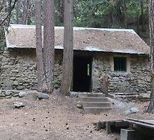 Deuel Cabin Sequoia National Forest by jdphoto86