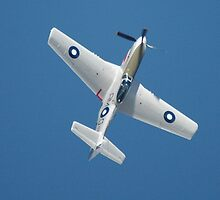 Zoom Climb - Mustang, Williamtown Airshow 2010 by muz2142