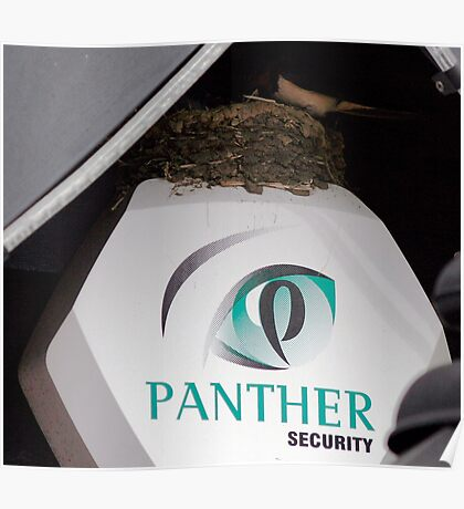 Protected Nest Poster