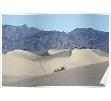 Mesquite Sand Dunes, Death Valley Poster