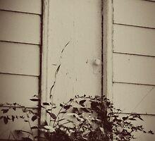 Mystery Door by Crystal Zacharias