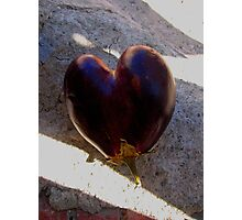 Aubergine Heart Photographic Print