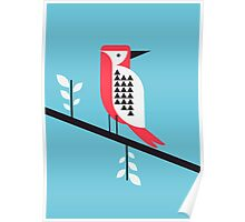 Woodpecker in blue Poster