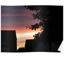 As the sun sets, a lone tree attempts to live in its colours Poster