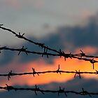 Forbidden Skies by Alex Boros