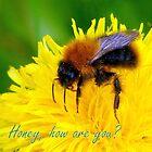 Greetings!! by HELUA