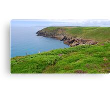 The Cliff Walk Canvas Print