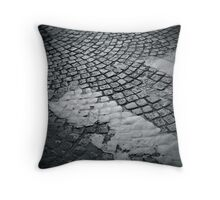 Pavement Throw Pillow