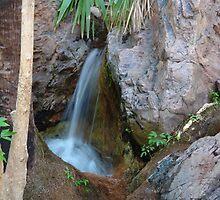 Zebedee Springs by georgieboy98