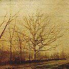 Stokes Lane by garts