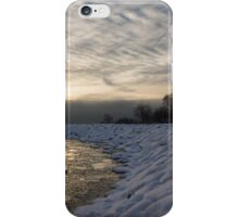 Cold, Moody and Fabulous - a Winter Morning on the Lake Shore iPhone Case/Skin