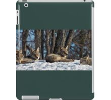 Coyotes iPad Case/Skin