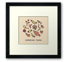 Cambrian Critters Framed Print