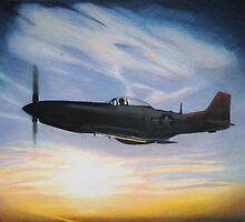 tuskeegee sunset-tuskeegee airmen series by ralburg