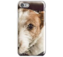 Molly On The Couch iPhone Case/Skin