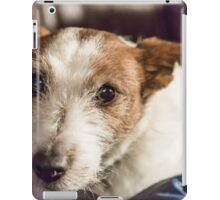 Molly On The Couch iPad Case/Skin
