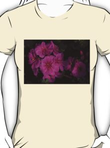 Silky Pink Cactus Blooms T-Shirt