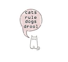 cats rule dogs drool  by Amanda  Cass