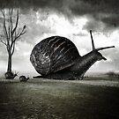 Snail Trail by Ash Sivils