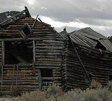 Pioneer Barn #3 by Ken McElroy