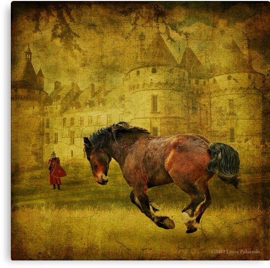 The Knight in Shining Armor's Horse by Laura Palazzolo