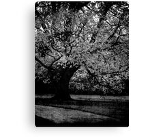 Opposing Forces #2 Canvas Print