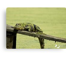 THE camouflage LOOK Canvas Print