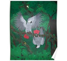 Playful Greys - African Grey Parrots Poster