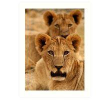 Curious lion cubs Art Print
