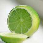 Lime by Sangeeta