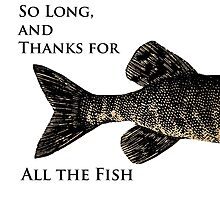 So Long, and Thanks for All the Fish by AllaTurca