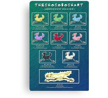 The Chocobo Chart Poster Canvas Print