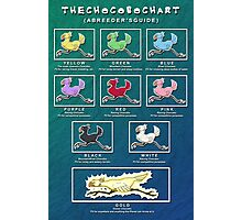 The Chocobo Chart Poster Photographic Print