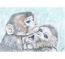 Monkey Business Photographic Print