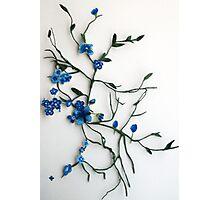 making flowers Photographic Print