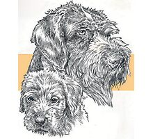 German Wire-haired Pointer, Father and Son Photographic Print