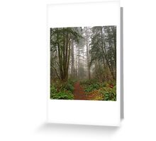 Elk Falls Forest Trails - Campbell River, British Columbia, Canada Greeting Card