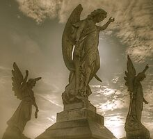 Angels by Dean  Swinfield