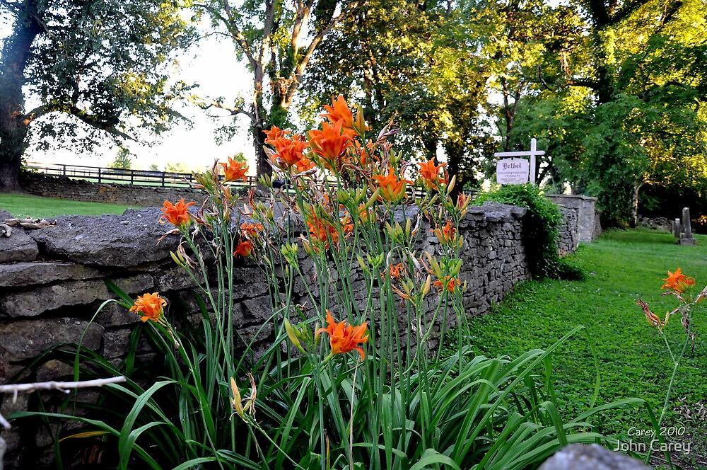 flowers and stone - kentucky churchyard by John Carey