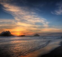 Seal Rocks, San Francisco by Ted Lansing