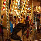 Carousel  by Michael D'Andrea Diaz