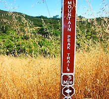 Trail Marker by heatherfriedman