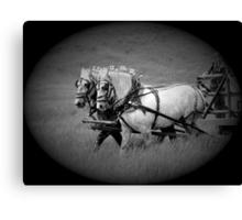The Grey Team, Bar U Ranch Canvas Print