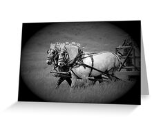 The Grey Team, Bar U Ranch Greeting Card