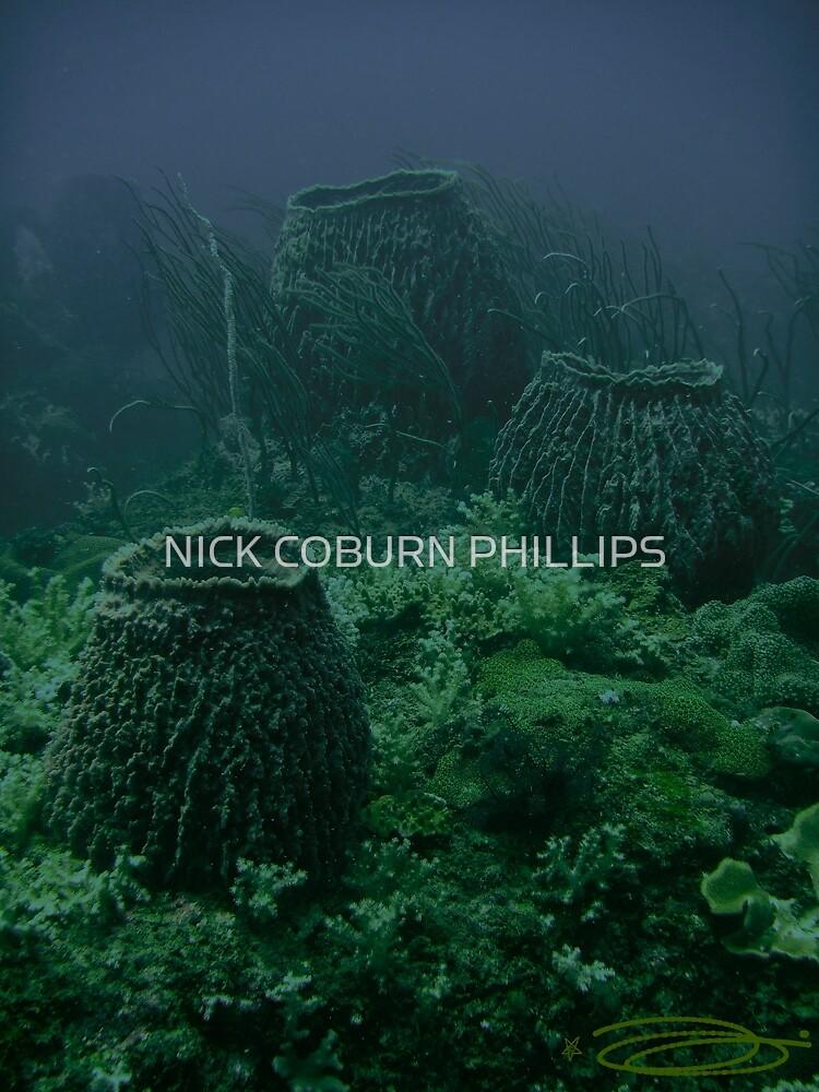 Barren Barrel Smokers by NICK COBURN PHILLIPS