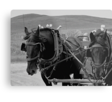 The Black Team, Bar U Ranch Metal Print