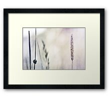 I stand alone Framed Print