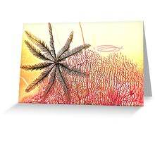 A feather in Gordons cap! Greeting Card