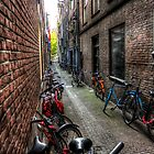 Amsterdam: Bikes and bikes and bikes... by Mike Olbinski